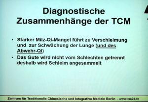 Diagnostische Zusammenhänge in der TCM nach Kürten. Abfotografierte Vortragsprojektion.