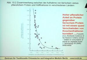 Zusmmanenhang Hüftfrakturinzidenz zur Relation zum Konsum von pflanzlichem zu tierischem Eiweiß nach Kürten. Abfotograierte Vortragsfolie.