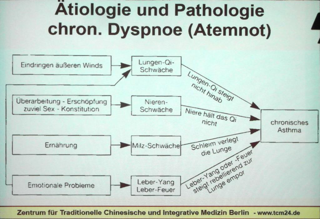 Ursachen für chronisches Asthma in der TCM nach Kürten. Abfotografierte Vortragsprojektion.