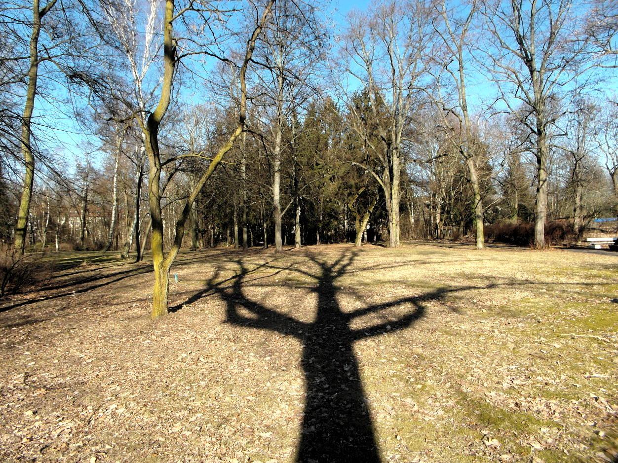 Leonorenpark — Parkblick am 15.02.2017